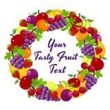 新鲜水果五颜六色的花圈  免版税库存图片