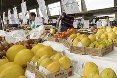 新鲜水果和新鲜蔬菜从农场指挥 库存照片