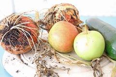 新鲜水果和Veg 免版税图库摄影
