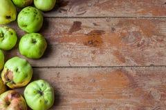 新鲜水果培养自己 免版税库存图片