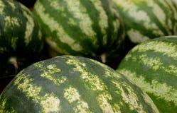 新鲜水果 2015年8月12日的混杂的果子背景 免版税库存照片