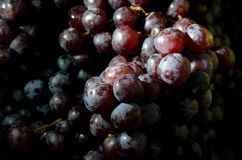 新鲜水果 2015年8月12日的混杂的果子背景 库存图片