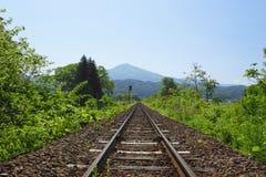 新鲜绿色和铁路 库存照片