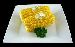 新鲜1个的玉米 库存照片