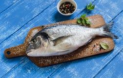 新鲜dorado的鱼 图库摄影