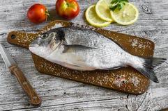 新鲜dorado的鱼 库存照片