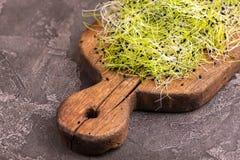 新鲜microgreen在葡萄酒切板的韭葱 免版税图库摄影