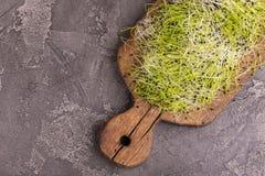 新鲜microgreen在葡萄酒切板的韭葱 免版税库存照片