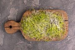 新鲜mircogreen在葡萄酒cuttig板的韭葱 免版税库存照片