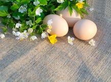 新鸡鸡蛋和春天静物画在tablecl开花 免版税库存图片