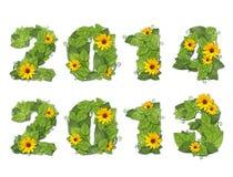 新年2014年2013年。日期排行了有露水a下落的绿色叶子  免版税库存图片