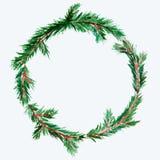 新年和圣诞节缠绕-在白色被隔绝的backg的杉树 免版税库存图片