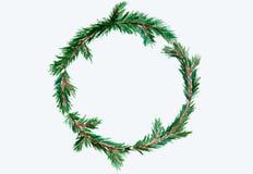 新年和圣诞节缠绕-在白色被隔绝的backg的杉树 免版税库存照片