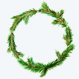 新年和圣诞节缠绕-在白色被隔绝的backg的杉树 库存图片