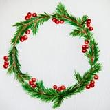 新年和圣诞节缠绕-杉树和槲寄生在白色 图库摄影