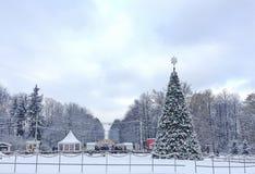 新年圣诞树在Sokolniki公园,莫斯科 免版税图库摄影