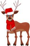 新年好鹿 库存图片