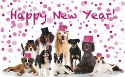 新年好 免版税库存照片