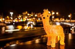 新年摆在反对阿姆斯特夜运河鹿的` s玩具  库存照片