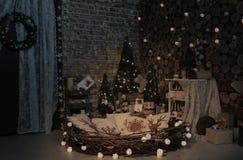 新年树自然演播室 库存图片