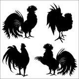 新年的标志的雄鸡的剪影 免版税库存照片