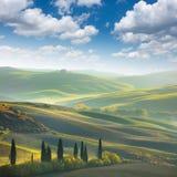 新绿色托斯卡纳风景 免版税库存照片