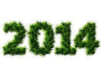 新年2014年被隔绝的圣诞树分支  免版税库存图片