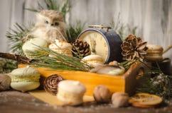 新年装饰用蛋白杏仁饼干,葡萄酒闹钟,猫头鹰之子a 免版税库存照片