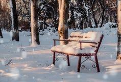 新年` s假日 日霜1月天然公园多雪的结构树冬天 免版税库存照片