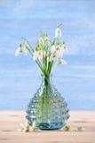 新snowdrops花束在木和蓝色背景的一个玻璃花瓶开花,垂直 库存图片
