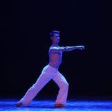 方向啼声现代舞蹈 库存照片