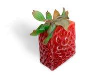 方形草莓 免版税库存照片