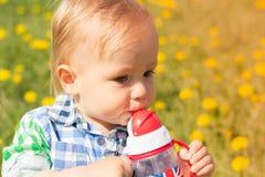 方格的衬衣的逗人喜爱的小男孩在蒲公英领域喝从乳瓶的 库存图片