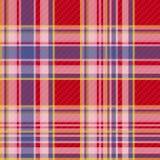 方格的织品无缝的样式 免版税库存照片