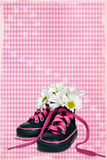方格花布粉红色 免版税图库摄影