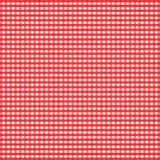 方格花布红色 免版税库存照片