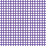 方格花布紫色 图库摄影