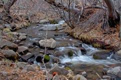方铅矿小河 库存照片