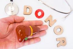 施主概念照片的肝脏和手的捐赠 3D的词在有信件的O捐款人上写字作为那捐赠的标志替换missi 免版税图库摄影