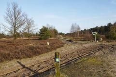 施内费尔丁根德国-足迹和标志在Luneburg荒地 库存照片