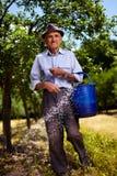 施肥在果树园的老农夫 免版税库存照片