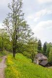 施洛斯山公园在弗赖堡市,德国 库存照片