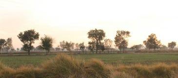 旁遮普邦的土地和领域 图库摄影