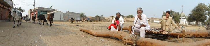 旁遮普邦的村庄场面在LahorePakistan附近的 库存图片