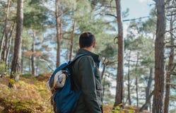 旅客人在秋天森林里 库存图片