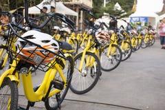 旅客人的黄色自行车在轰隆Mod节日附近租赁骑自行车的游览 库存图片