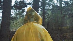 旅客在一件黄色雨衣穿衣 抚养走在与通过背包的艰苦跋涉的后面观点的年轻女性远足者 股票录像