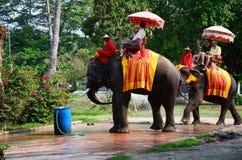 旅客游览的骑马大象在阿尤特拉利夫雷斯古城附近 免版税库存照片