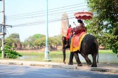 旅客游览的骑马大象在阿尤特拉利夫雷斯古城附近 图库摄影