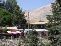 旅游业在黎巴嫩,黎巴嫩雪松 图库摄影